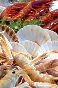 pesce-crudo-200x300.jpeg[MFX-1]
